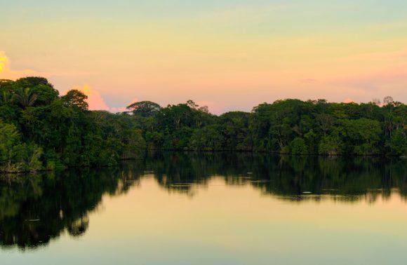 Sacha Lodge – Ecuador Amazon