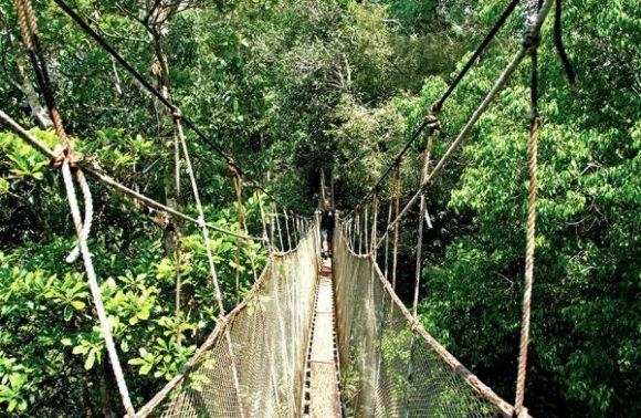 Rio – Iguassu Falls – Amazon & Machu Picchu