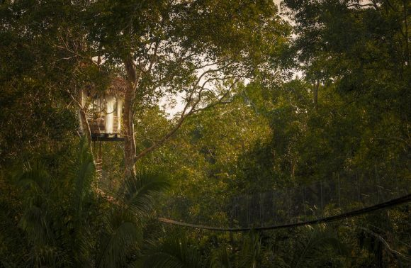 Treehouse Lodge – Peru Amazon
